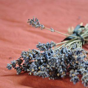 pb-lavender