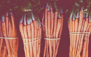 Carrot-Seed-Essential-Oil