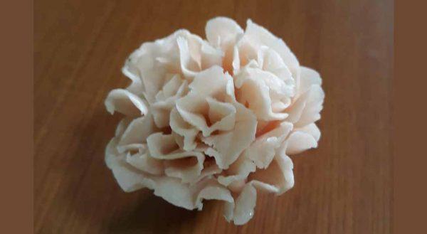 Soap-Carnation