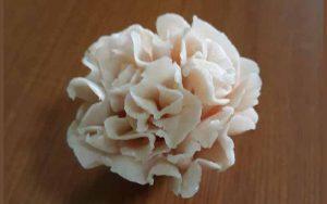 Soap-Carnation-Main